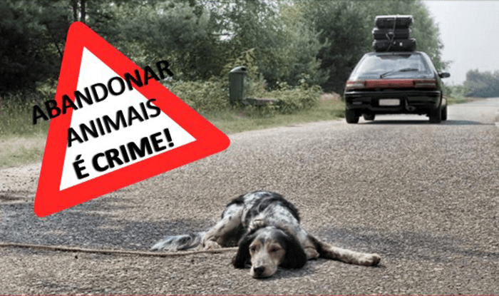 Criminalization of Abandonment and Abuse of Animals
