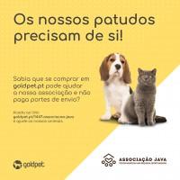 Gold Pet Faça o seu donativo sem sair de casa !