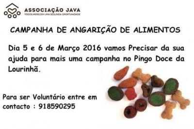 Campanha Pingo Doce