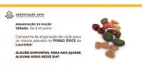 Campanha Pingo Doce (8 de Junho)