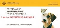Campanha no INTERMARCHÉ de Peniche